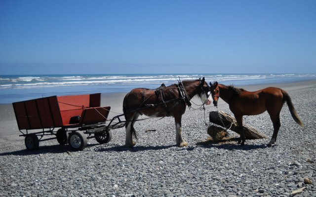 A beautiful day on the beach, Barrytown near Punakaiki.
